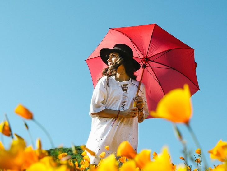 قعدة بلكونة, سيدة, مظلة, يد, ورود